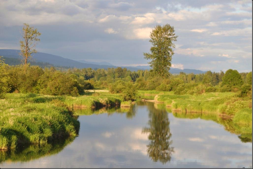 Reflection on water at Pitt Meadows, BC