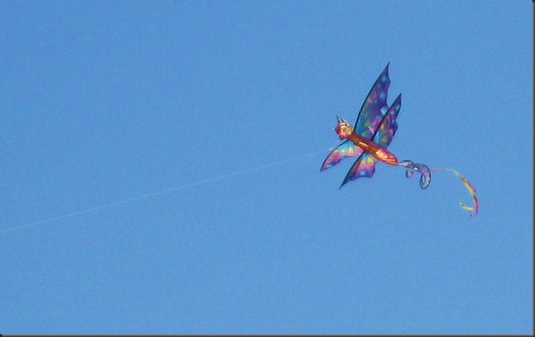 Wind powered kite