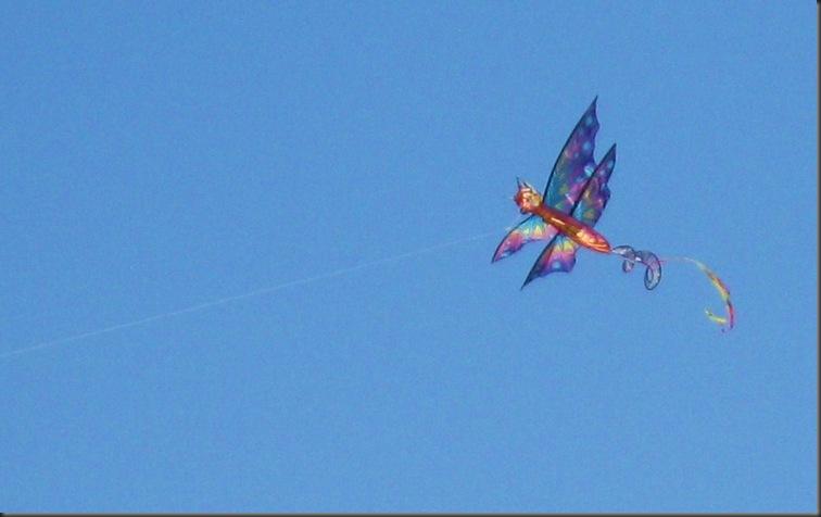Wind powered kite