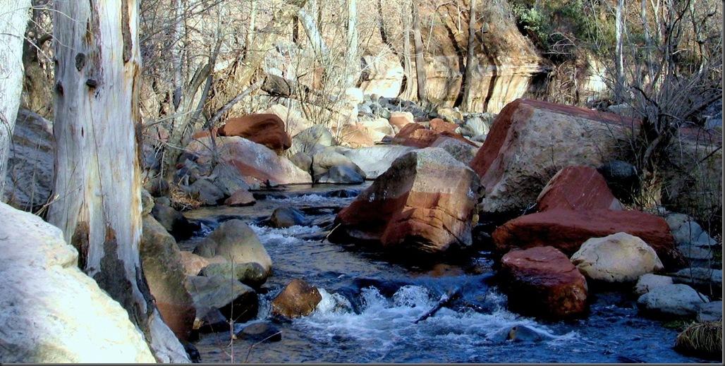 reds rocks ina stream near sedona
