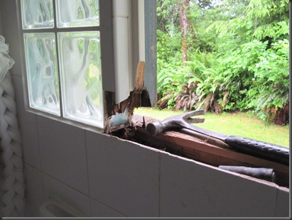 Bathroom window replacement