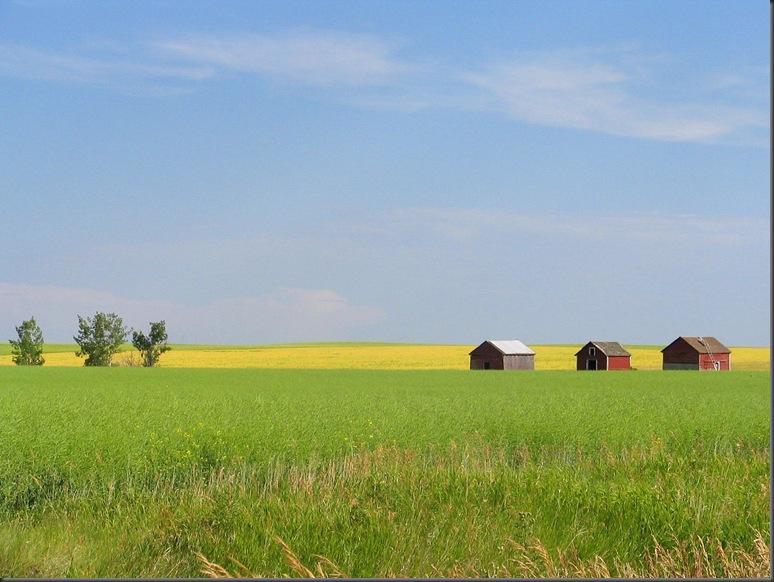 Alberta prarie farm