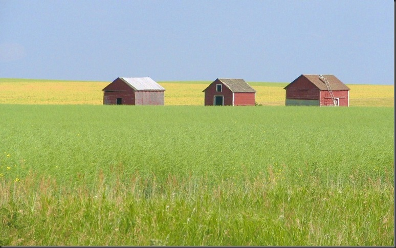 Prarie farm buildings