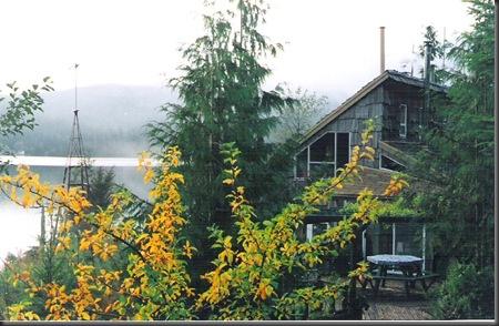 Cabin in the 1990's