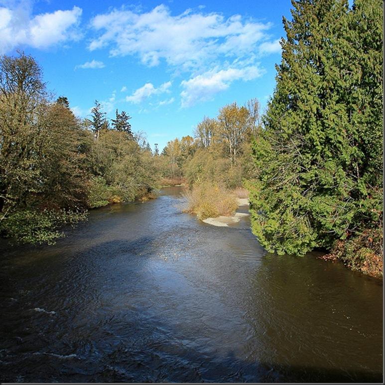 tsolum river under a bright blue sky - by Charles Brandt
