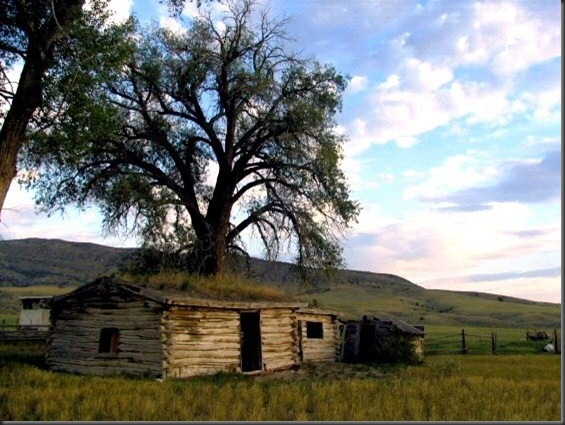 Old homestead in Montana