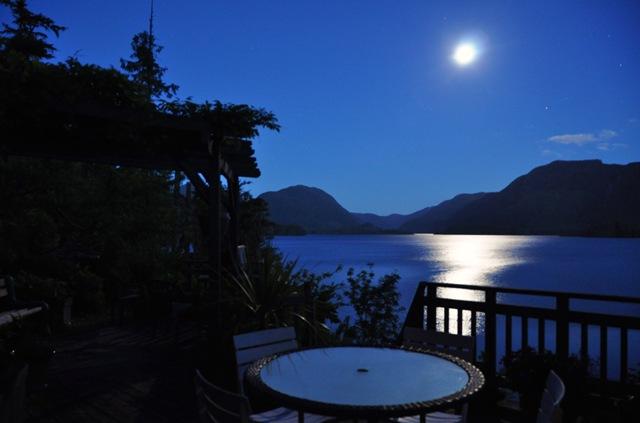 Moonlight at the Lake - Bruce Witzel photo