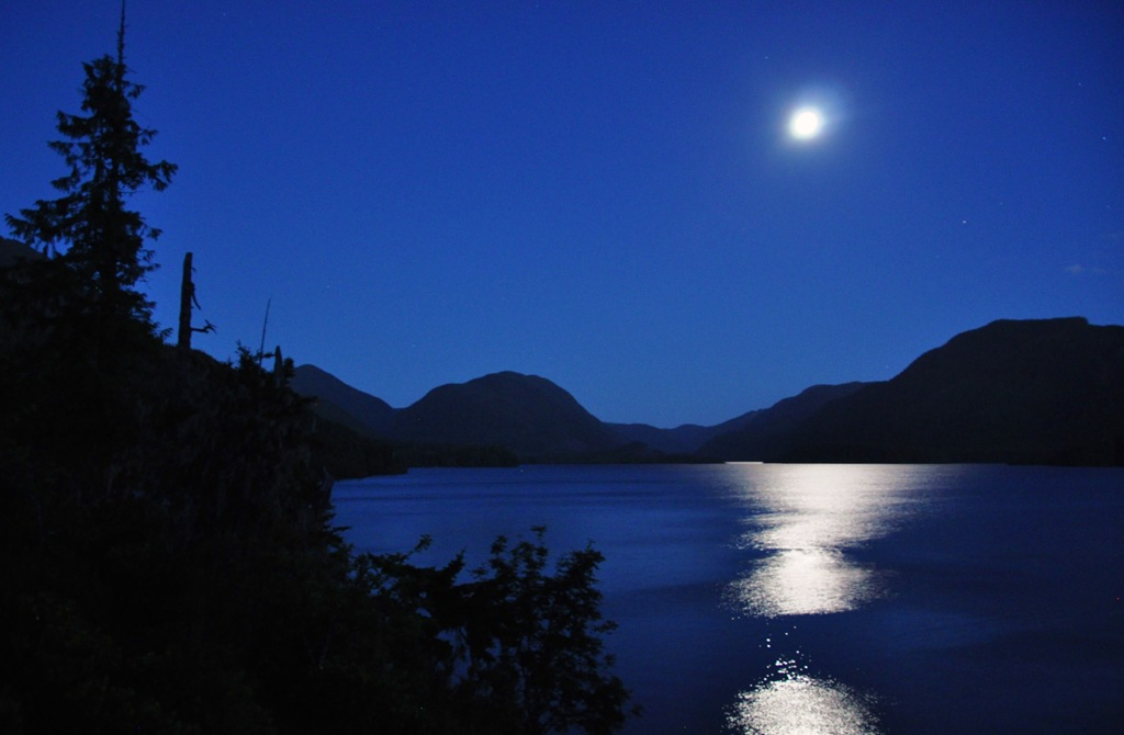 Moonlight on the Lake 15 - Bruce Witzel photo