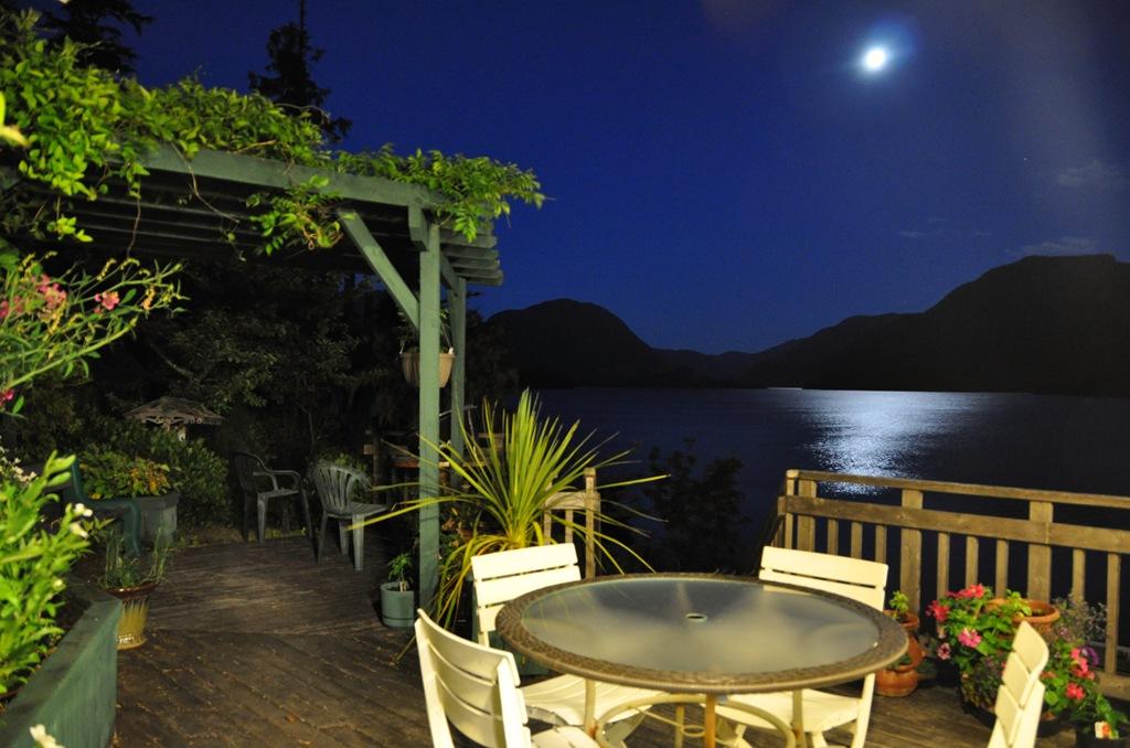 Moonlight on the Lake! - Bruce Witzel photo