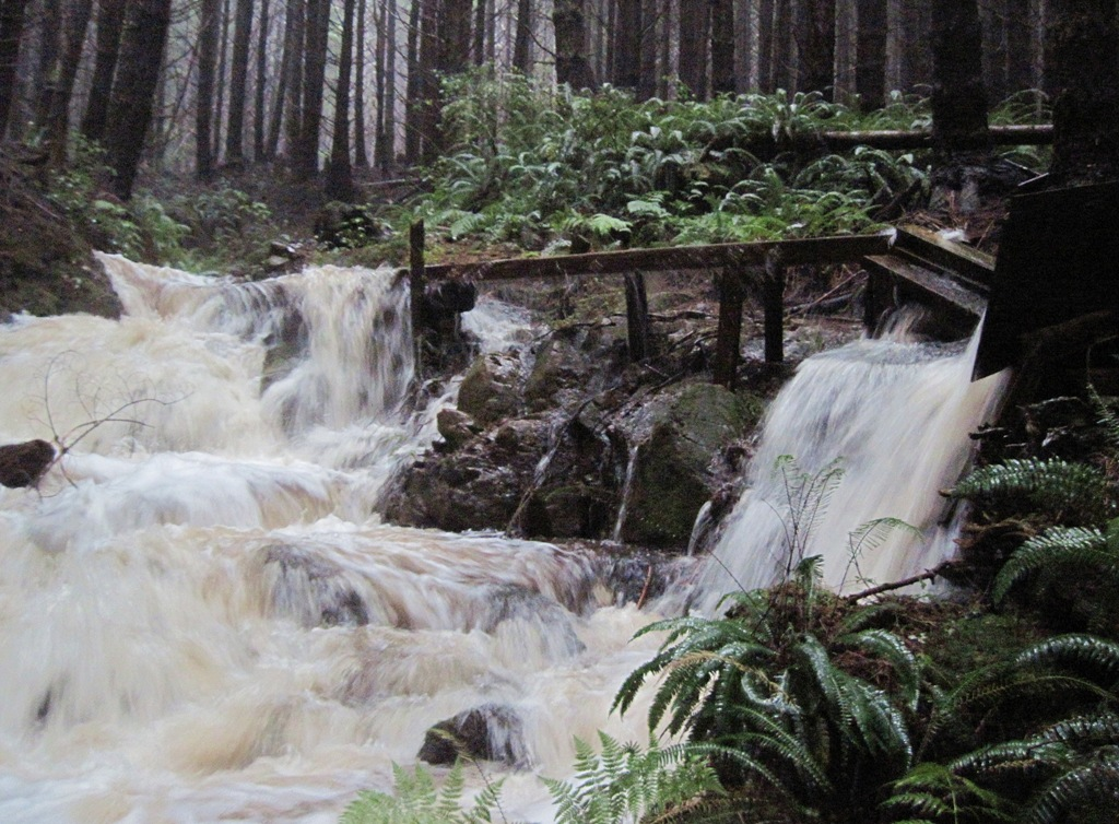 Flume for penstock - Full rain Oct.20, 2014 - Bruce Witzel photo