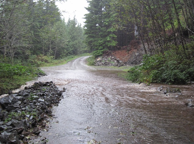 The stream is flooding the road on October 19, 2014 - Bruce Wtizel photo