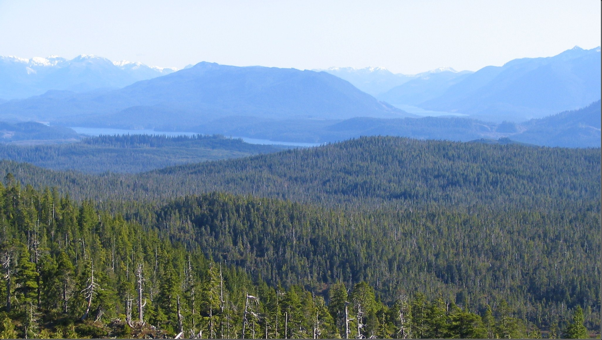 View of Northern Vancouver Island - Bruce Witzel photo