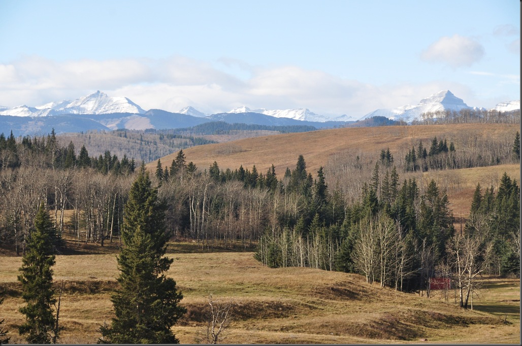 Foothills against the Canadian Rockies - Bruce Witzel photo