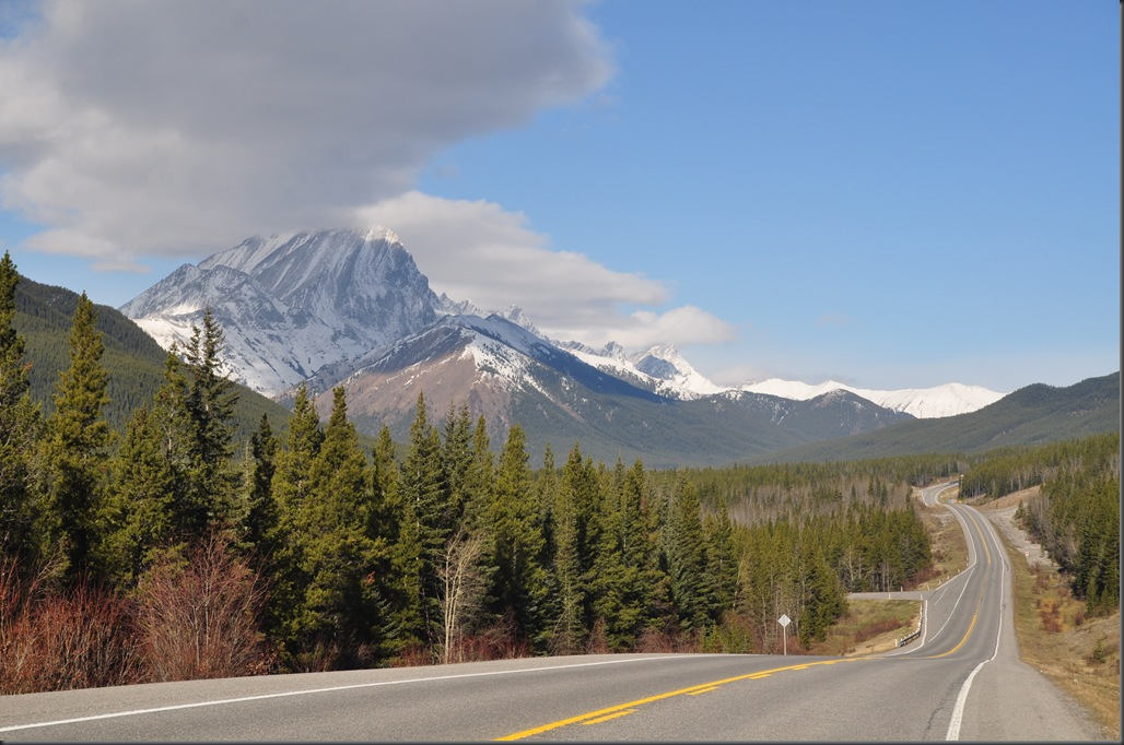 Highway 40 Alberta - Bruce Witzel photo