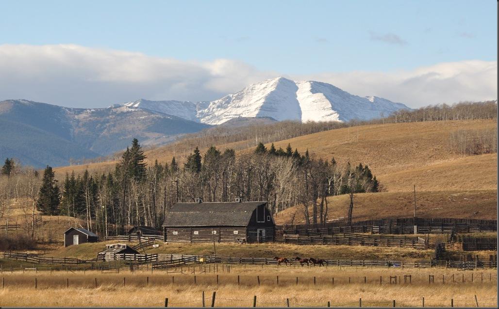 Near Longview Alberta - Bruce Witzel photo (2)