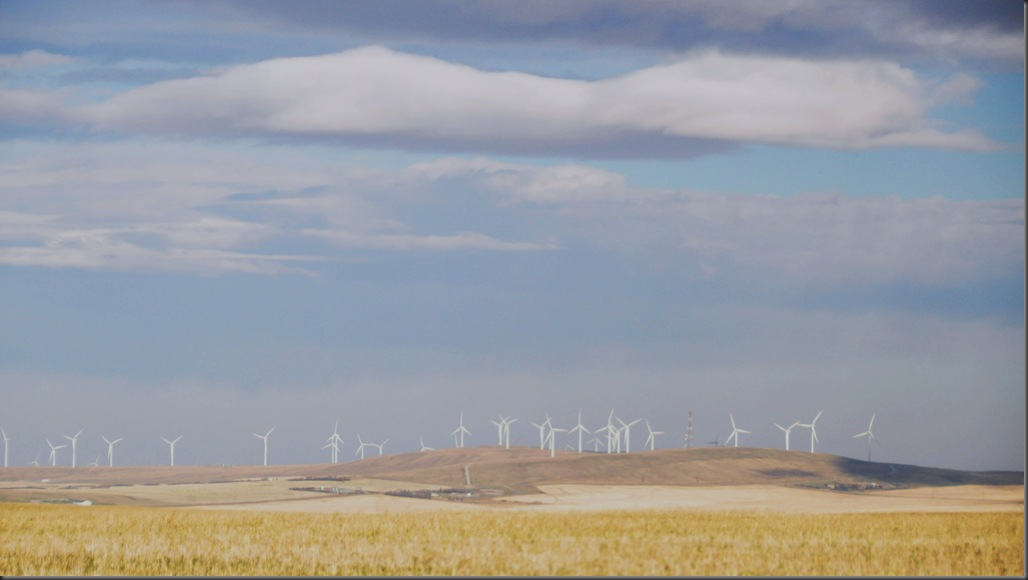 Near Pincher Creek Alberta - Cowley Ridge Wind Site - Bruce Witzel photo