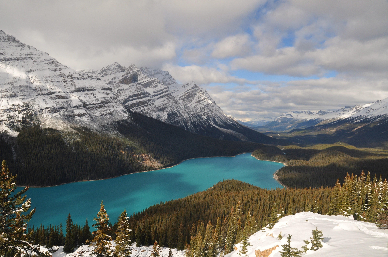 Peyto Lake, Icefields Parkway, Banff National Park - Bruce Witzel photo