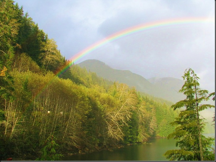 A rainbow in the forest - Northern Vancouver Island