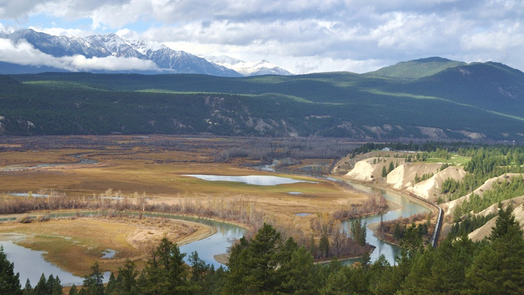 Columbia River Wetlands near Radium Hotsprings, BC - Bruce Witzel photo