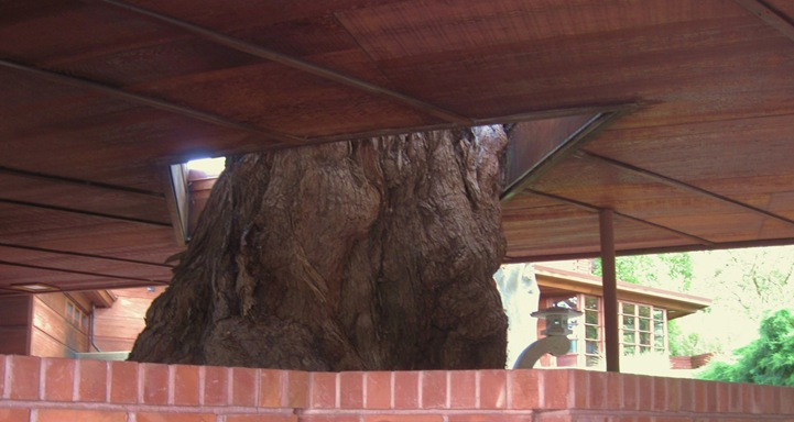 The natural house - Frank Lloyd Wright's honeycomb house - bruce witzel design