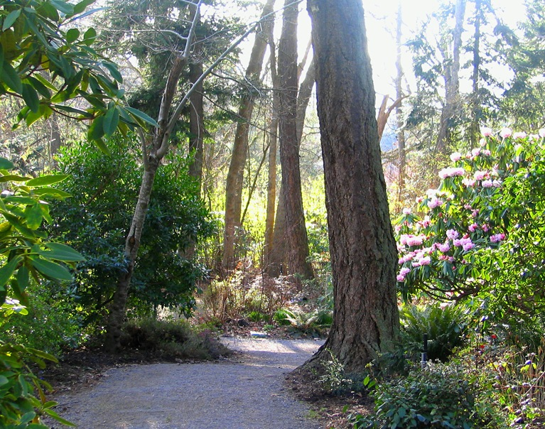 Finnerty Garden at University of Victoria - bruce witzel photo