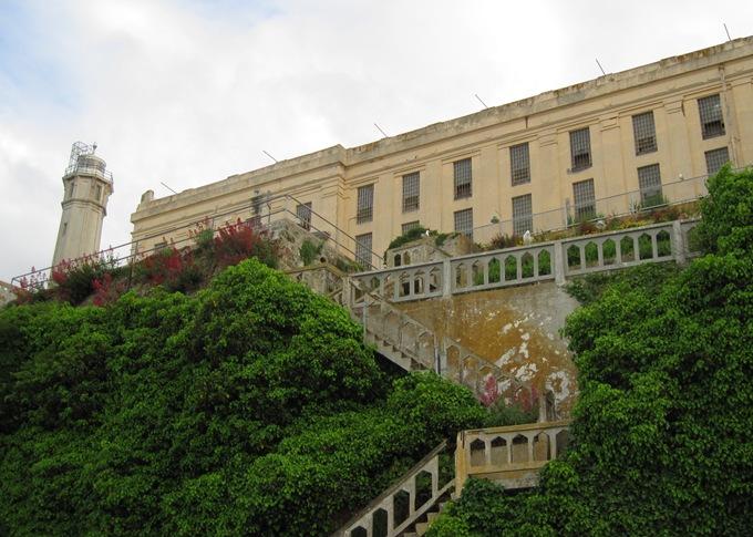 Alcatraz -bruce witzel photo