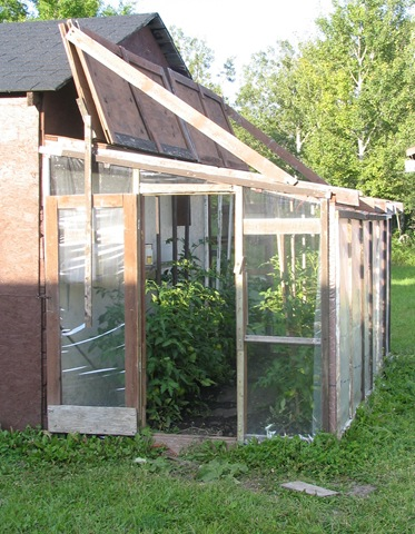 Homebuilt attached greenhouse (Aunt Anna's)  bruce Witzel photo
