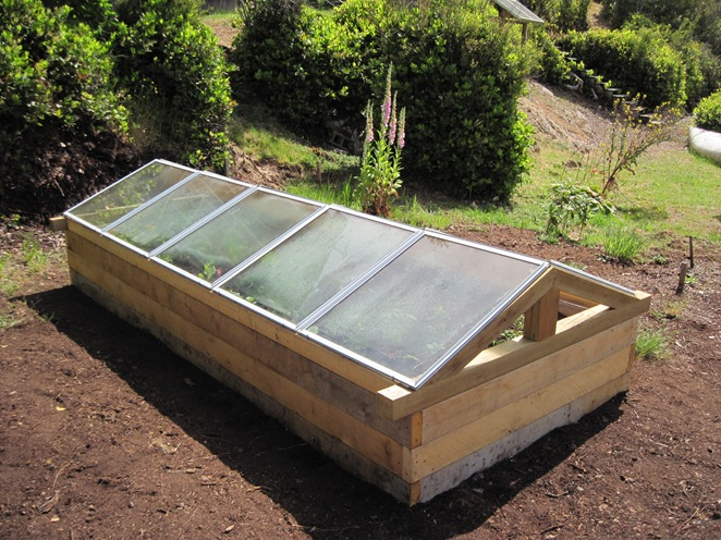 cold frame is keeping the heat in - bruce witzel photo