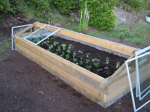 Glass lift off cold frame - bruce witzel photo