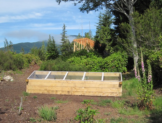 New coldframe with greenhouse & shop under construction - bruce witzel photo