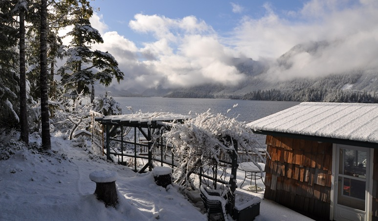 Bruce's and Fran's cabin in winter - B. Witzel photo