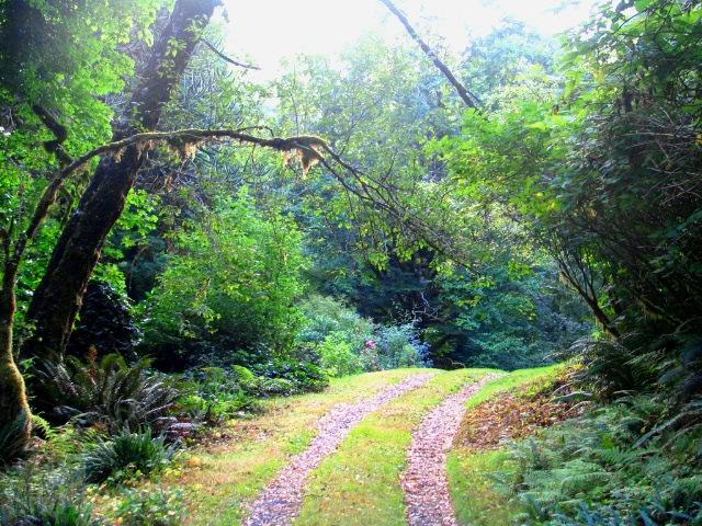 san josef wagon road @ ronnings garden - bruce witzel photo