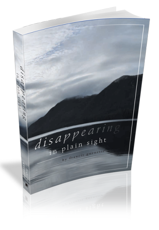 disappearing-in-plain-sight-3-d-bookcover