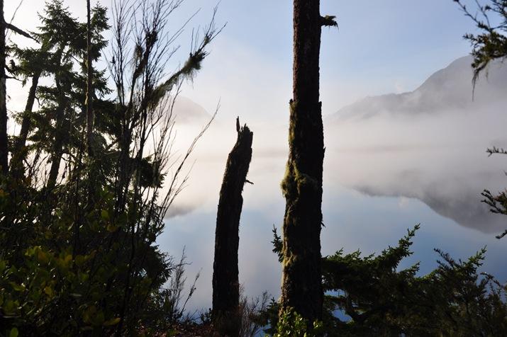 Fog lifting, March 24 2016 - bruce witzel photo