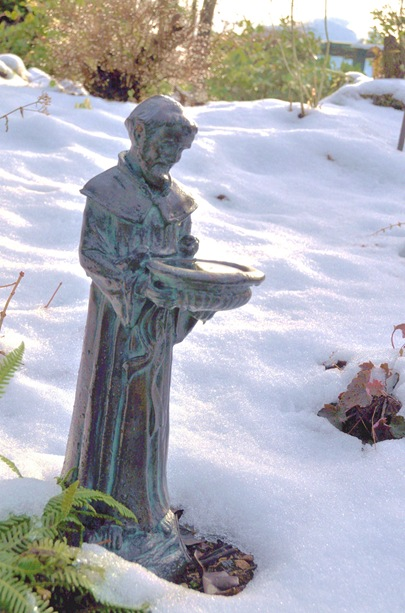 Saint Francis - bruce witzel photo