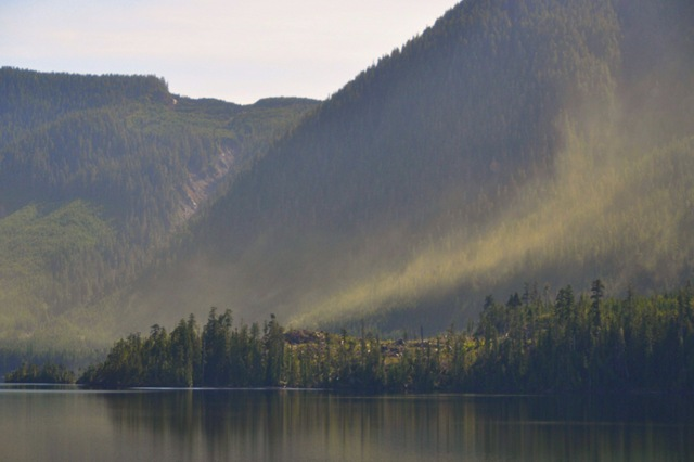 Pollen eruption at the lake April 7, 2106  telephoto view -bruce witzel photo