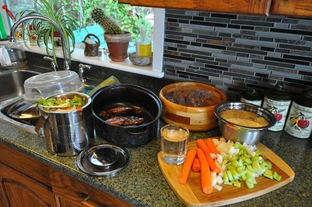 Preparing a solar meal in a black pot - bruce witzel photo
