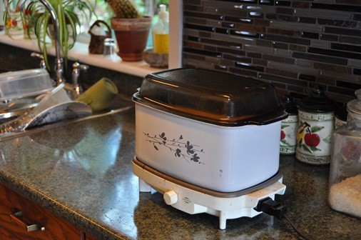 Traditonal electric crock pot - bruce witzel photo