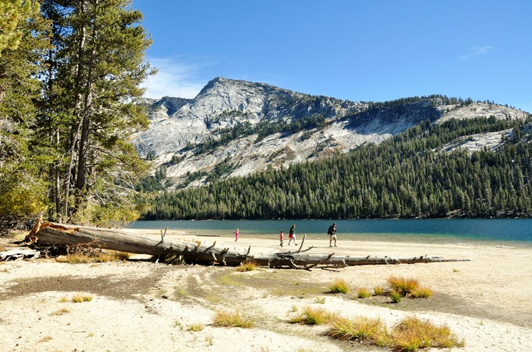 A family in the  Sierra Nevadas - Bruce Witzel photo