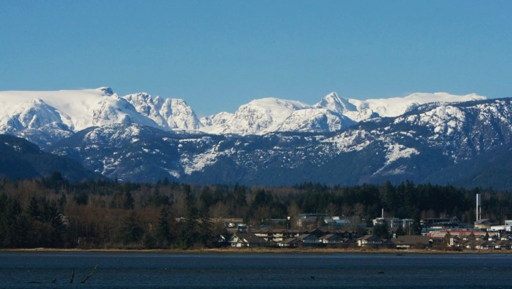 Looking across Courtenay River Estuary towards Comox Glacier - Charles Brandt photo
