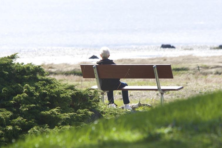 meditation . Courtenay estuary, Laing property - charles brandt photo