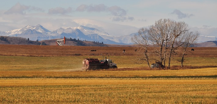 Alberta Rockies and oil - bruce witzel photo (2)