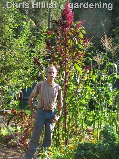 Chris Hilliar in his garden