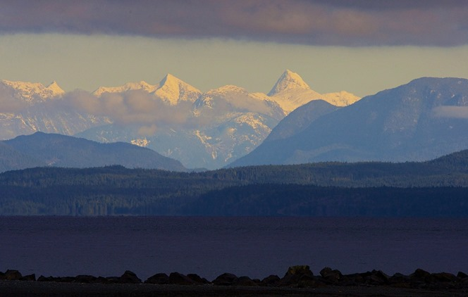 Coast Mountains, from Oyster Bay, Dec. 2, '14. charles brandt photo (2)