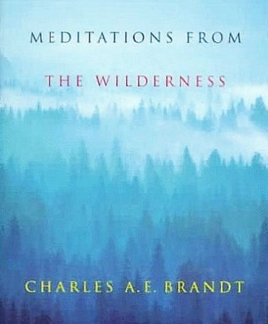 Meditations from the Wilderness (2)b