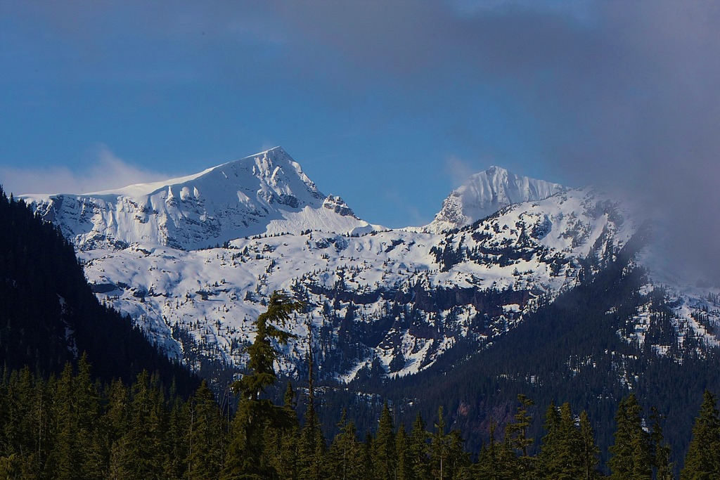 Mt. Albert Edwards, Vancouver Island BC - March 21, '15, charles brandt photo (2)