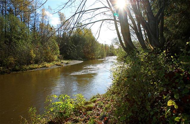 Tsolum River - by Charles Brandt