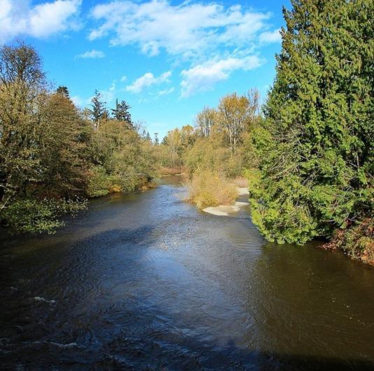 tsolum river under a bright blue sky - by Charles Brandt] (2)