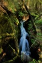 Water-fall-in-the-woods-bruce-witzel-photo-3.jpg