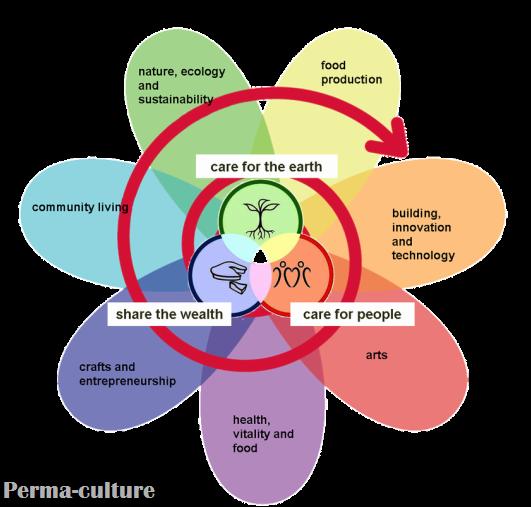 Permculture flower